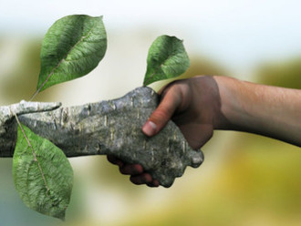 L'ecologia delle organizzazioni.